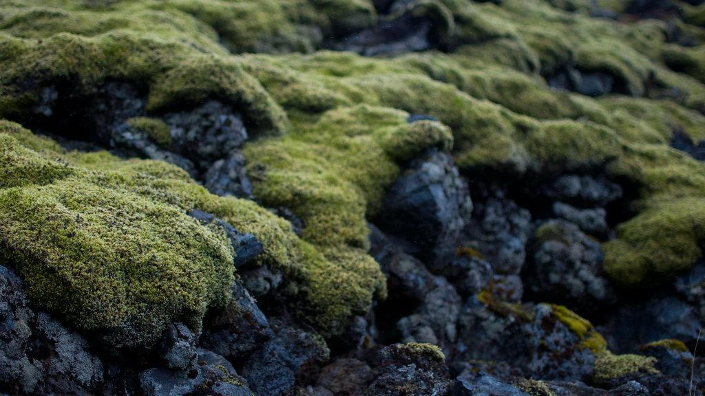 islande2012-57.jpg